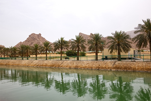 green-mubazzarah-man-made-lake al ain